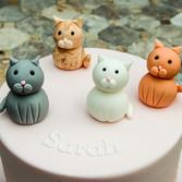 Sugar Cats