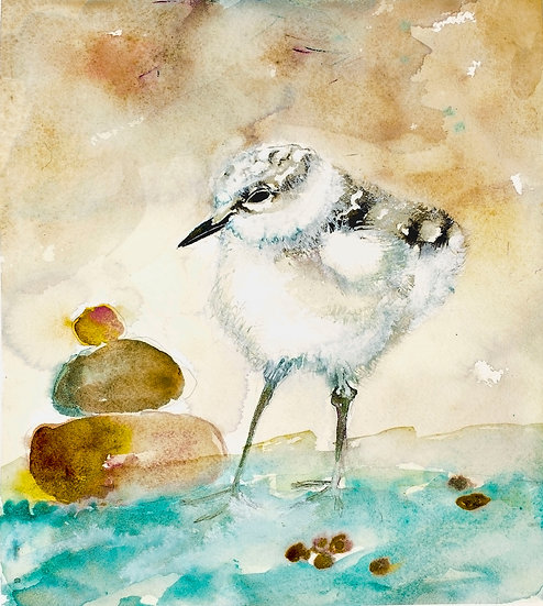 Calidris by Jodie Apeseche