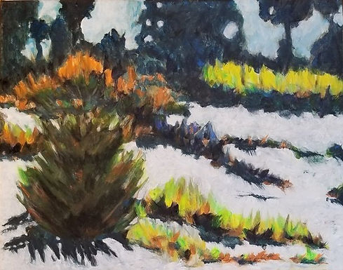 Corn Snow by Virginia Cook