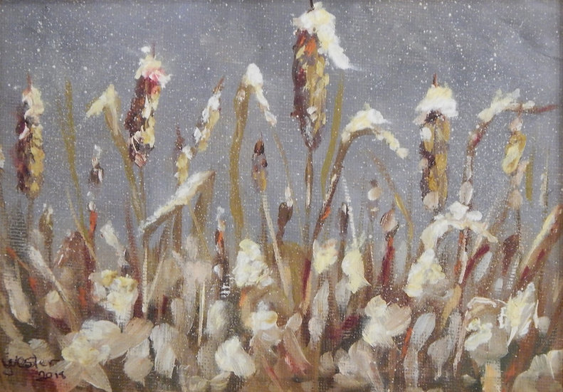 Winter Cat Tails by Judy Wester