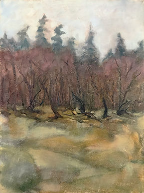 Spring on the Assabet by Frank Bennett