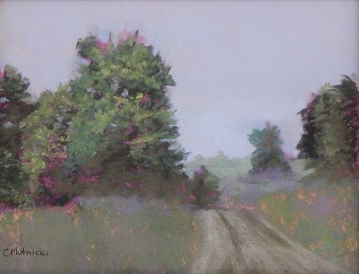 The Path by Cindy Plutnicki