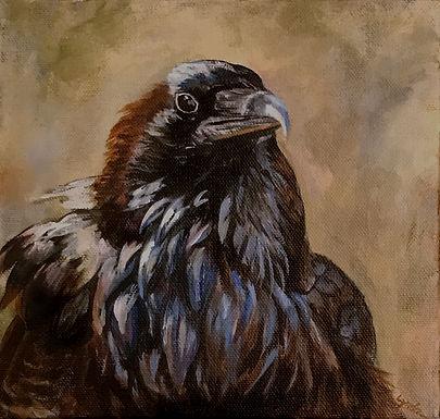 HM: Crow, The Mystic by Lynda King