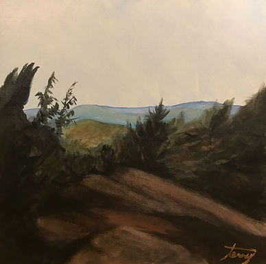 Rock Ledge by Terry Kessel Myers Coney