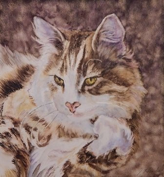 HONORABLE MENTION: Vikies Cat by Jean Hendry