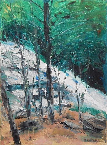 Mountain Brook by Ralph Caputo
