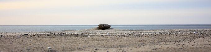 Morning Zen by Roberta Anslow