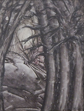 Between a Rock and a Treescape by Jeanne Carter