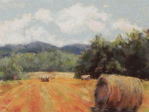 Hayfield by Jan Durgin