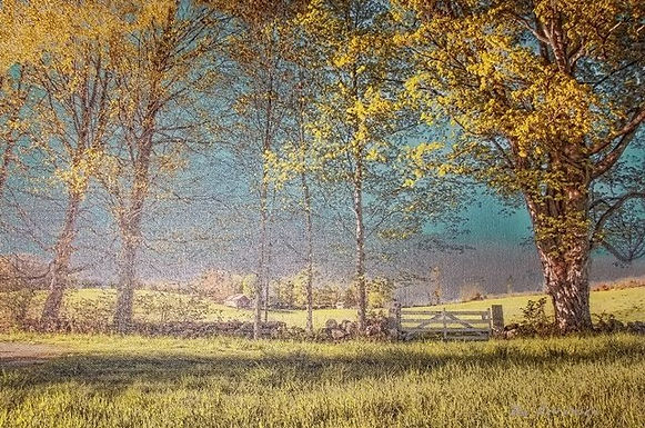 Spring Chestnut Hill Farm by Ron Levenson - People's Choice Award
