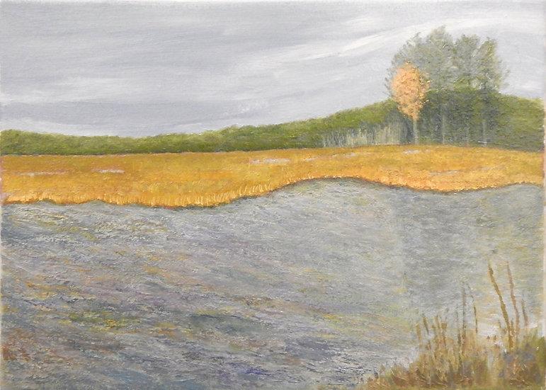 Autumn by Diana Gallo