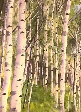 Birches Revisited by Josette Kaplan