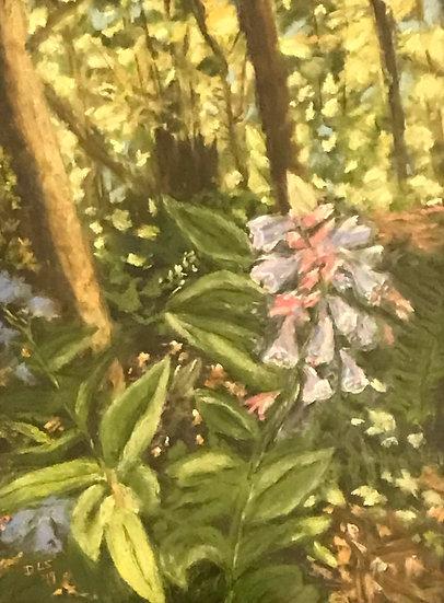 Arboretum Woodland by Deborah Schottler