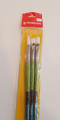 Princeton Snap! Brushes
