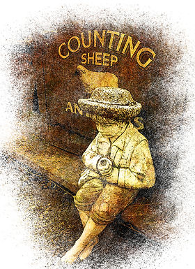 Counting Sheep by Linda McLatchie