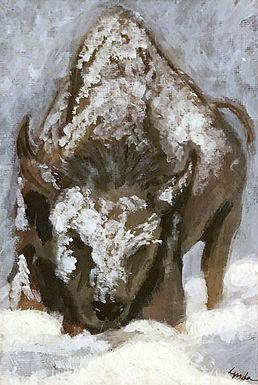 Buffalo in Winter By Lynda King