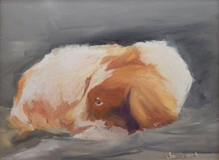 Casey by Elizabeth Ricketson