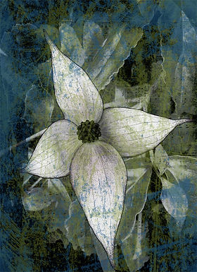 Flower Study in Blue and Green by Linda McLatchie