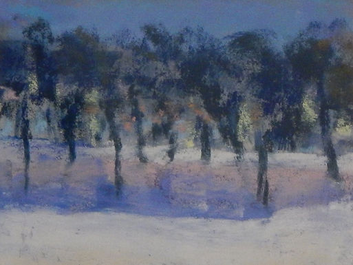 Snow Trees - Day by Jill Johnson