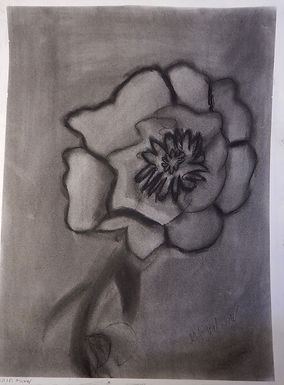 Black and White Flower by Michael Glasner