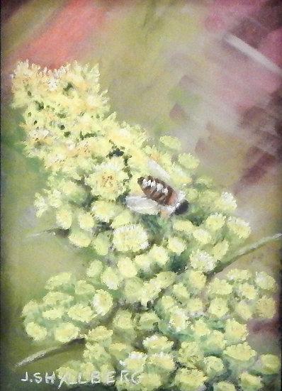 Bzzy Bee by Jody Shyllberg