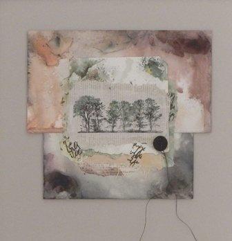 The Wisdom of Trees by Linda McLatchie