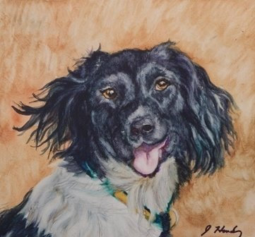 Hunting Dog by Jean Hendry