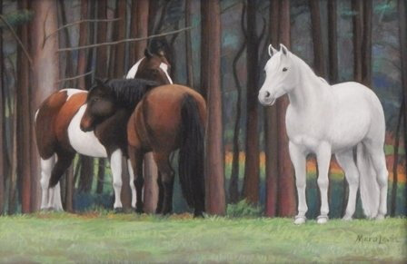 The Lead Mare by Mara Levin