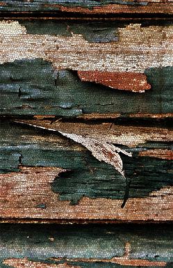 Peeling Paint Mosaic by Linda McLatchie