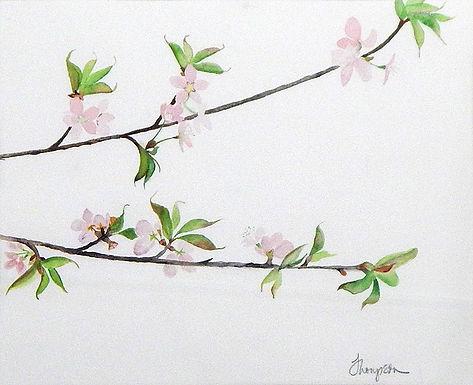 Flowering Branch by Joanne Thompson