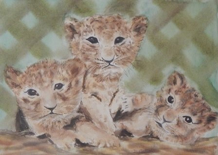 Tiger Cubs by Dina Castelli
