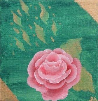 Pink Rose by Dorothy Alexander