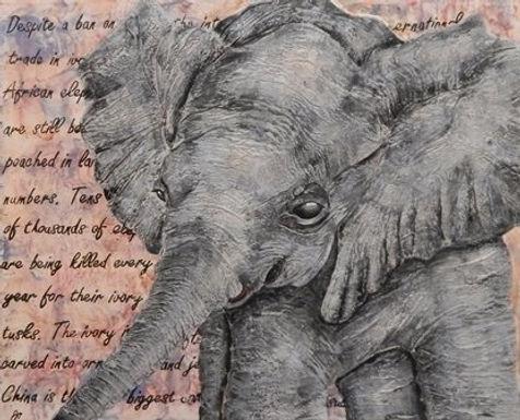 Baby Elephant by Jacki O'Rourke