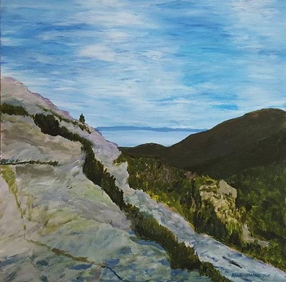Spring Hill Trail Ascending