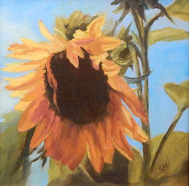 Sun Worshiper by Sandra Kavanaugh