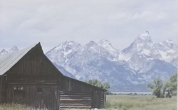 Mormon Row, WY by Aidan Reinhold