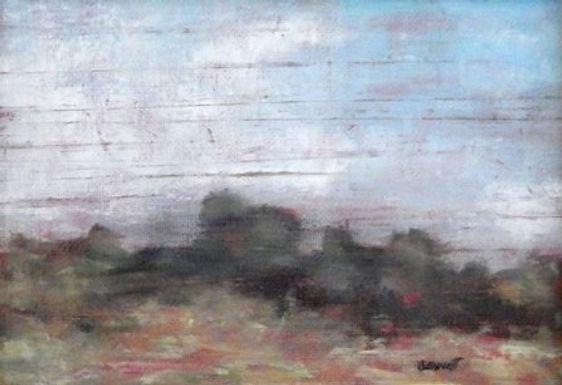 Parminter's Pasture, NH by Frank Bennett