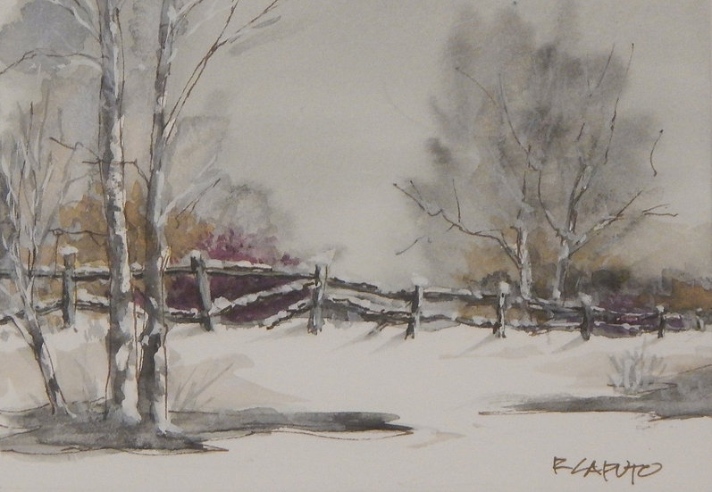 Winter Fences by Ralph Caputo - 2nd Place
