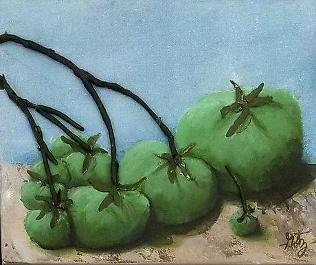 32. Tomatoes – Green