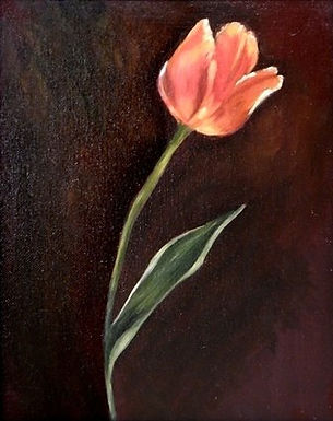 Tulip Study by Judy Wester - Honorable Mention