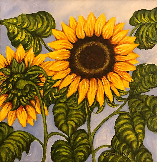 Sunflowers by Sue Carlin