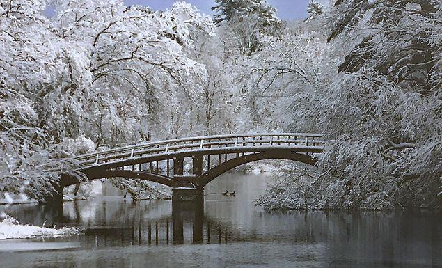 3. Winter Scene - SOLD