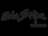 logo-carrefour-eric-stipa-242x182.png