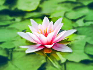 Meditation is easier than you think (4)