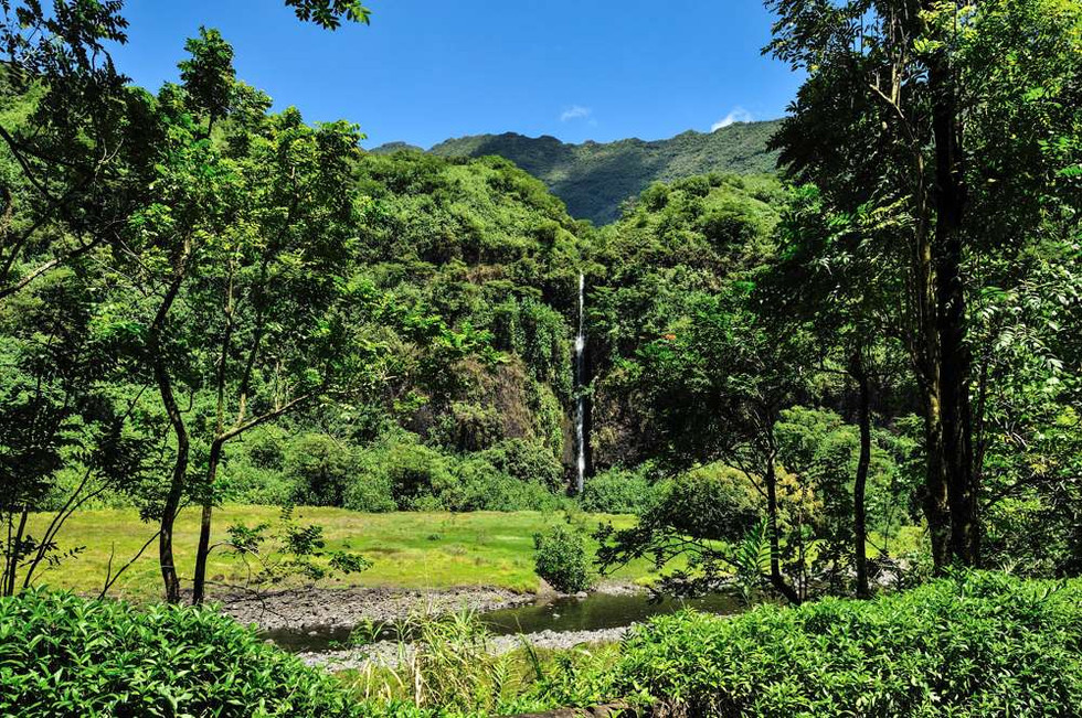 Waterfall in the Papenoo Valley, Tahiti