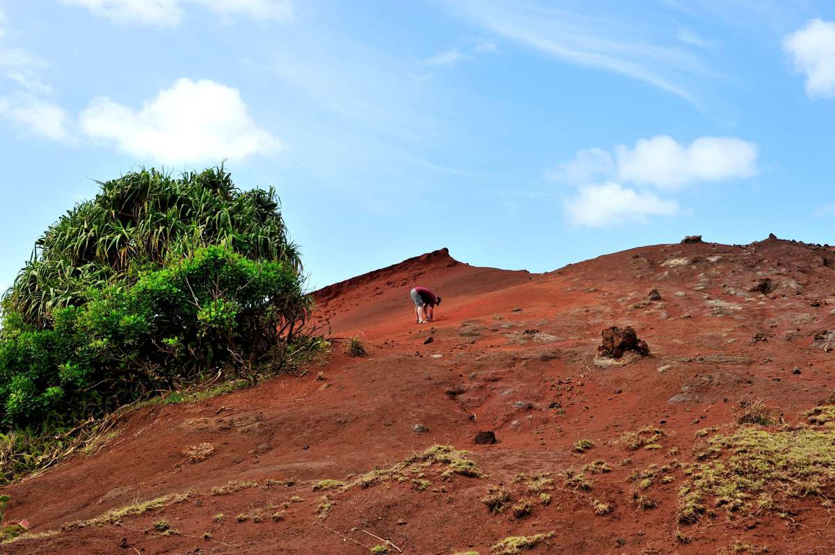 In search for the reddest soil on Pitcairn Island
