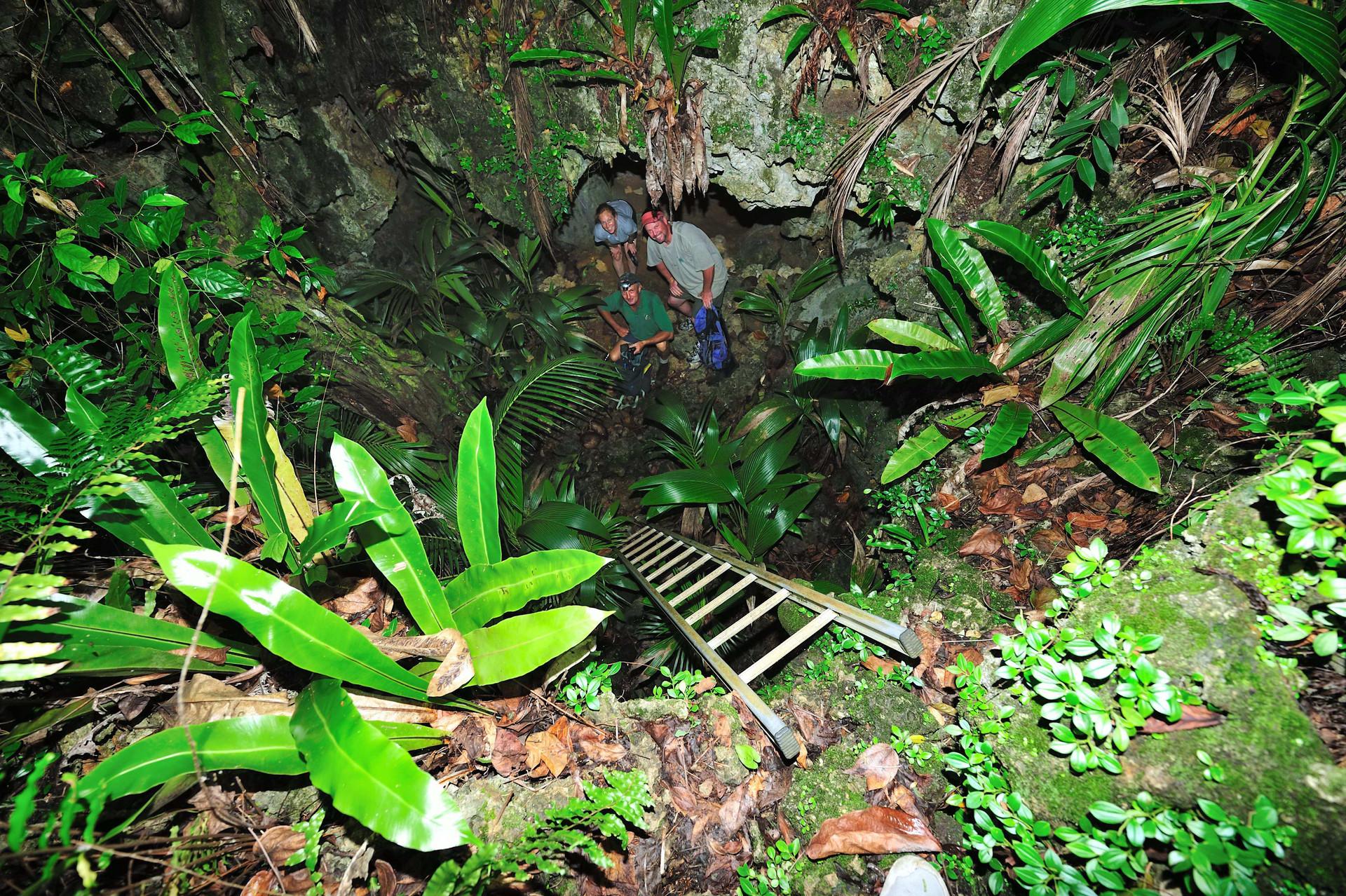 Entrance to Anatakitaki Cave (Kopeka Cave)