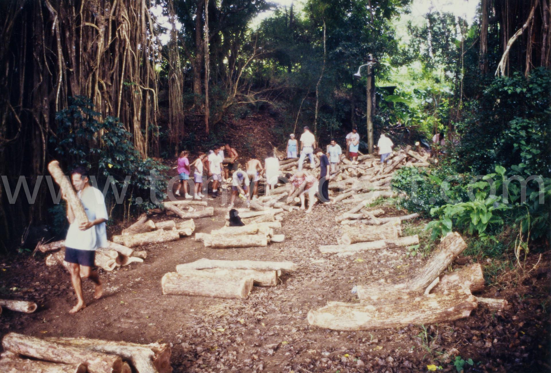 1999 Sharing Miro wood