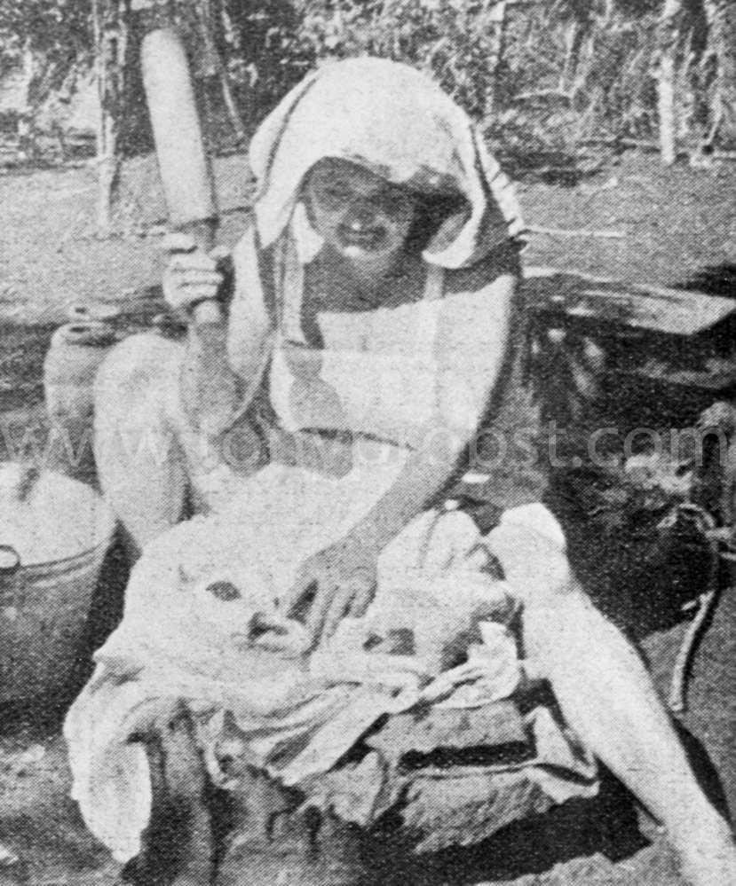 1933 Zeta Clark