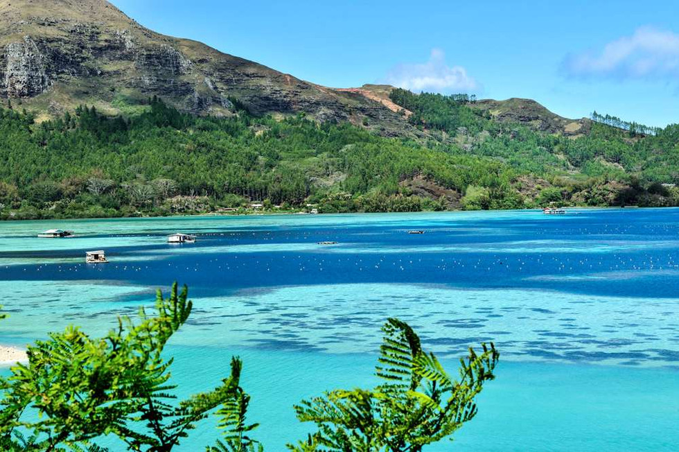 Tahitian black pearl farms, Mangareva